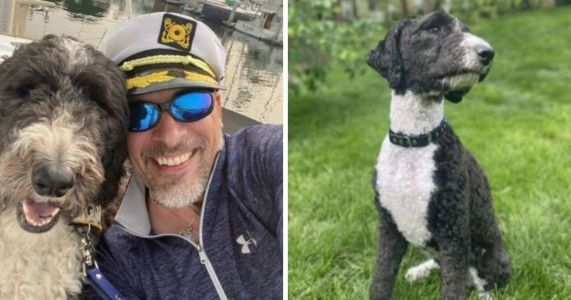 Man Loses Wife To Cancer & Now Must Go To Court To Keep Her Service Dog