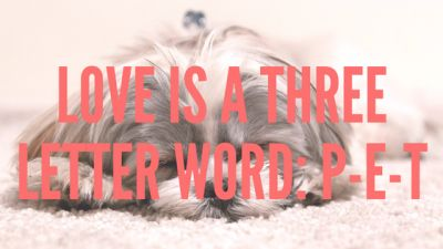 Love is a Three Letter Word: P-E-T