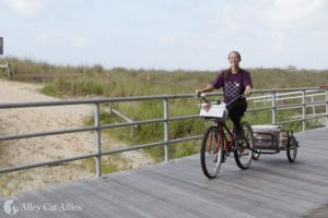 A Bicycle Built for Boardwalk Cats