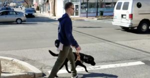"""New York Guide Dog Is So Fast That He's Often Called A """"Black Lab-orghini"""""""