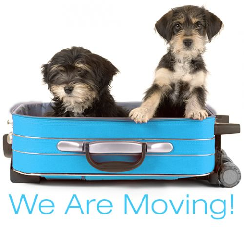 We Are Moving! Bookmark Our New Location