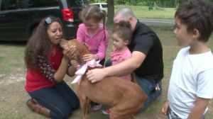 Dog With Cancer Missing For 2 Years Finally Reunited With Family