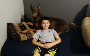 Boy Sells His Toys To Help Pay For Service Dog's Care After An Unexpected Diagnosis