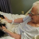Pets in nursing homes bring both benefits and risks