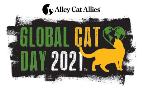 Global Cat Day is TODAY-Are You Ready to Change the World for Cats?