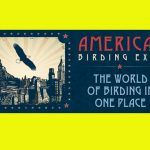 You Should Go to the American Birding Expo!