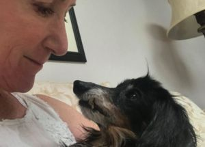 Super Senior Dog Steals A Woman's Heart With Just One Glance