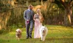 Planning a Wedding? Have Your Pet Be Part!