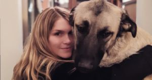 Couple Tears Up After Large, Fearful Rescue Dog Finally Learns To Snuggle