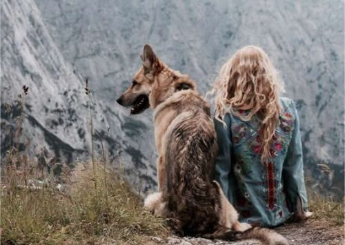 How to Travel Better with a Dog