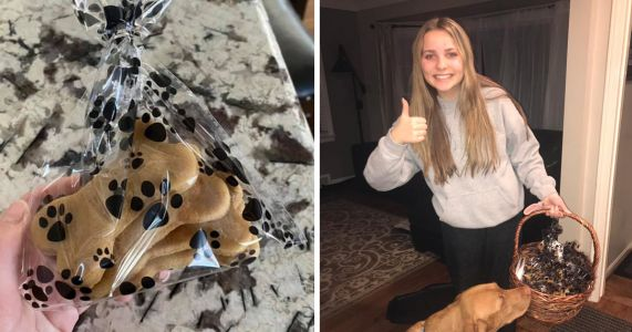 Against All Odds, Teen's Dog Treat Business Booms In Rough Times