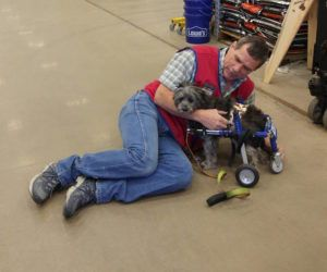 """Special Needs Dog Befriends Lowe's Employee Who Helps Him With His """"New Wheels"""""""