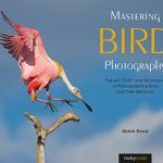 Mastering Bird Photography: A Book Review by an Amateur Bird Photographer