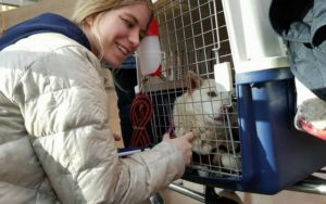 Teenaged Olympian Helps South Korean Rescue Dog Find New Home
