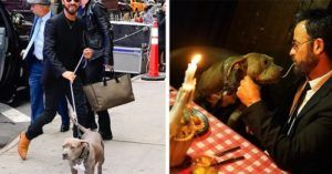 Justin Theroux's Rescue Pibble Was His Date To The 'Lady & The Tramp' Premiere