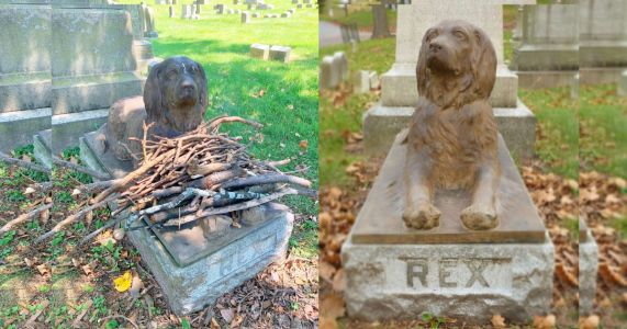 Visitors Are Leaving Sticks At 100-Year-Old Dog's Grave