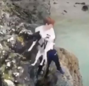 Cruelty on the Cliffs of Cornwall as Terrified Pup Is Thrown into the Sea