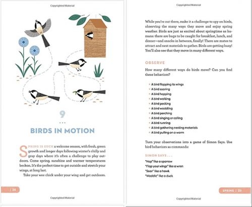 A Stick! A Bird! A Tree!-Books on Nature for Parents & Kids