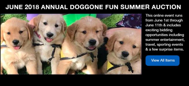 Annual Doggone Fun Summer Auction - June 1-11