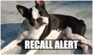 Raw Pet Food Brand Recalls Its Second Batch Of Products In 2 Months