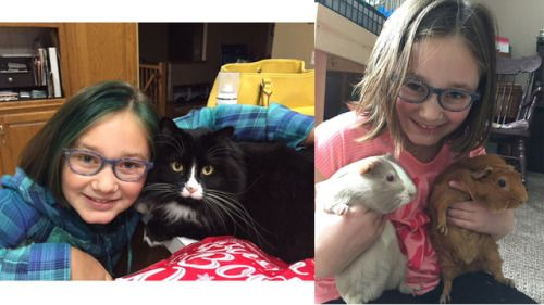 My family and I adopted our cat, Penny, three years ago, and I