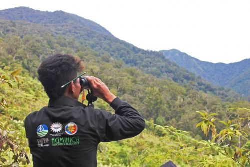 Indigenous Forest Guards Achieve Breakthroughs in Protecting the Great Philippine Eagle