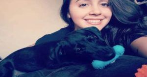Brazilian Woman and Her Adopted Pup Rely on the Kindness of a Stranger