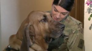 """Army Private Reuinited With Dog After """"Friend"""" Gave Him Away"""