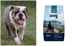 Amazon Breaks Into The Pet Industry With The Launch Of Their Dog Food