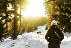 Pet Travel: Pet Friendly Cabin in the Woods - You, Your Dog and the Wonder of Nature