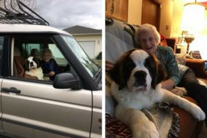 93-Year-Old Woman Is Best Friends With Her Giant Fluffy Neighbor