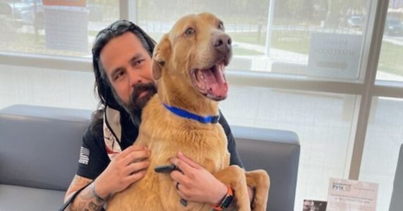 Lost Dog Returns Home After Five Years & 823 Miles