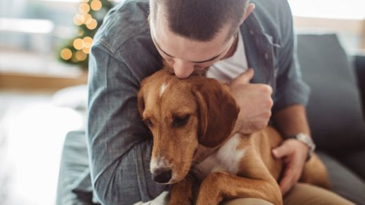 Your Mental Health Suffers When Your Pet Gets Sick