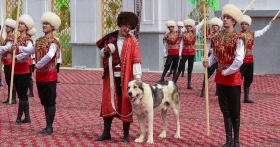 Asian Country Dedicates New Holiday To Native Dogs