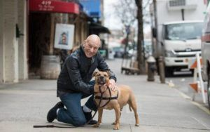 Patrick Stewart Teams Up With The ASPCA To End Dog Fighting
