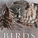The Splendor of Birds and National Geographic: a Book Review