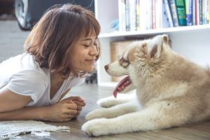 Does Your Pooch Like To Smooch? The Answer May Surprise You