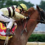 Why is even a small cough a big problem in a racehorse?