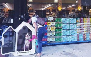 Air-Conditioned Dog Houses Let Your Pup Go Where You Go