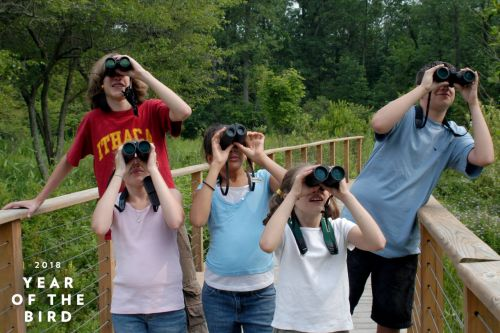 Take a Child Into Nature: 5 Tips for Fun Field Trips