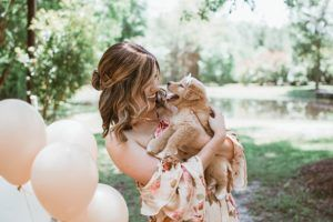 """Gender Reveal"" Puppy Photoshoot Is Almost Too Cute For Words"