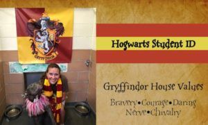 Shelter Channels Harry Potter To Sort Dogs By Personality Rather Than Breed