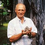 Listening to Falcons: The Peregrines of Tom Cade