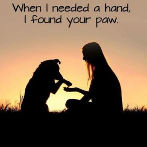 When I needed a hand, I found your paw. ThankfulThursday