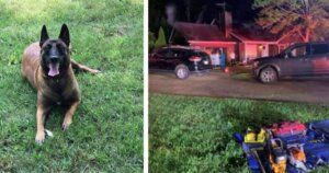 Dog Barks At Door To Save Neighbors From House Fire