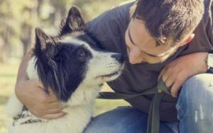 """Can Dogs """"Fake"""" Illnesses & Injuries For Attention?"""