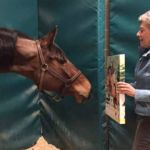 Teamwork and Determination Key to Mare's Recovery