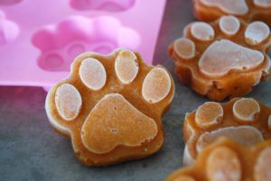 Frozen Dog Food Toppers: A Great Way To Bump Up Your Pup's Food Bowl