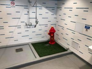 Atlanta Airport Officials Explain $3.9 Million Price Tag For Dog Bathrooms