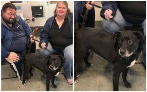 Anxious Veteran & Lonely Shelter Dog Become Each Others' Heroes, Thanks To Customers Like You